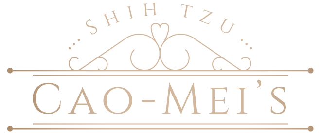 Kennel Cao-Mei's